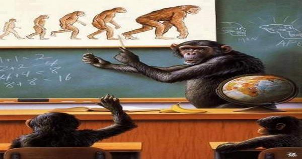 ลิง ก็ คือลิง