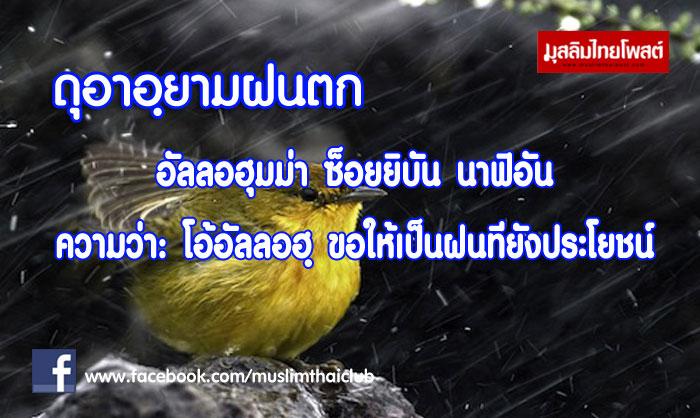 ดุอาอฺยามฝนตก